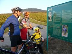 Cykloturistika na jižní Moravě